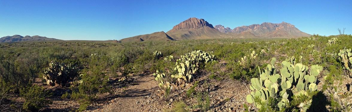 Chihuahuan Desert Nature Trail Views