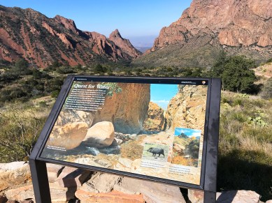 Interpretive Sign on the Chisos Basin Window View Trail Overlook