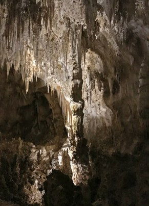 Giant Rock Column in the Big Room at Carlsbad Caverns