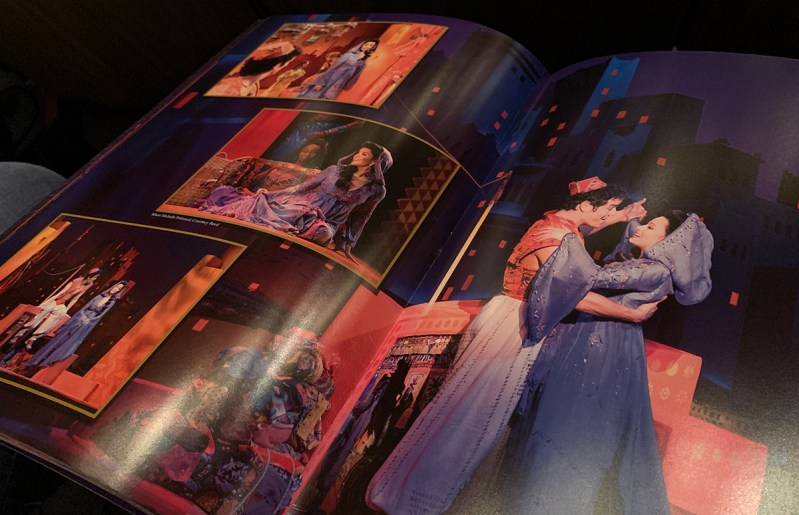 Disney Aladdin Broadway Show Program