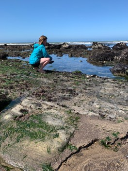 Natalie Bourn at the Bowling Ball Beach Tide Pools