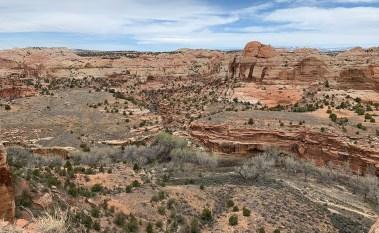 Read Rock Landscape In Utah