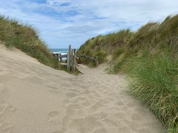 Path To Beach From Bodega Dunes Beach Parking Area