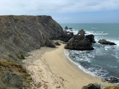 Walking the Bluff Loop Trail At Bodega Head