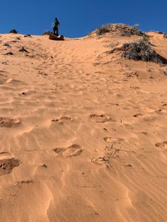 Sand Sledding In Utah