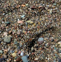 Wright's Beach Made Of Pebbles And Agates Not Sand