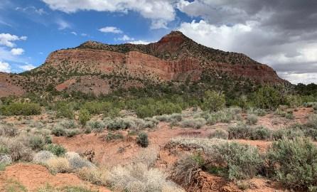 Beautiful Zion Landscape