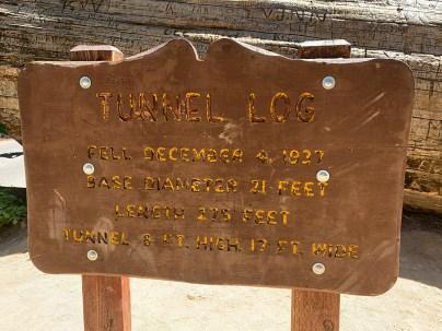 Tunnel Log Sign