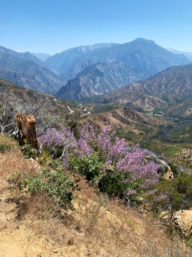 Driving the Kings Canyon Scenic Byway