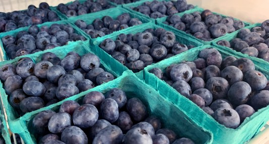 Organic Blueberries from Cascadian Farms
