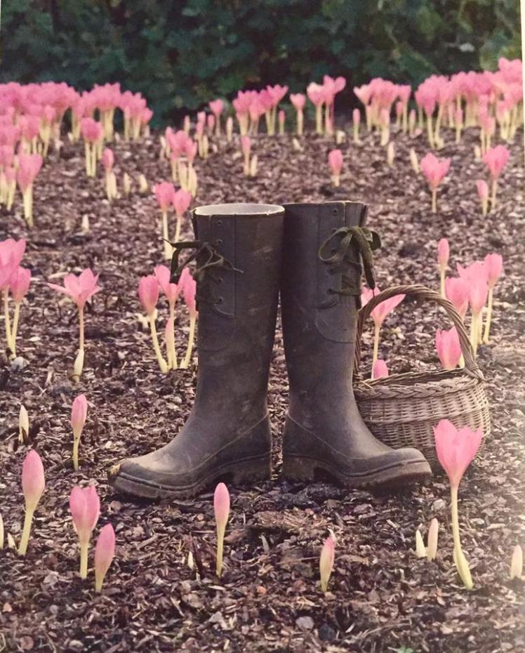 Beth Chatto's Gardening Boots