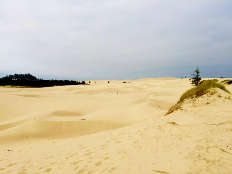 West Coast American Roadtrip Oregon Sand Dunes USA Travel Beach View