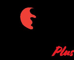 Fox Mail Plus omnichannel marketing solutions