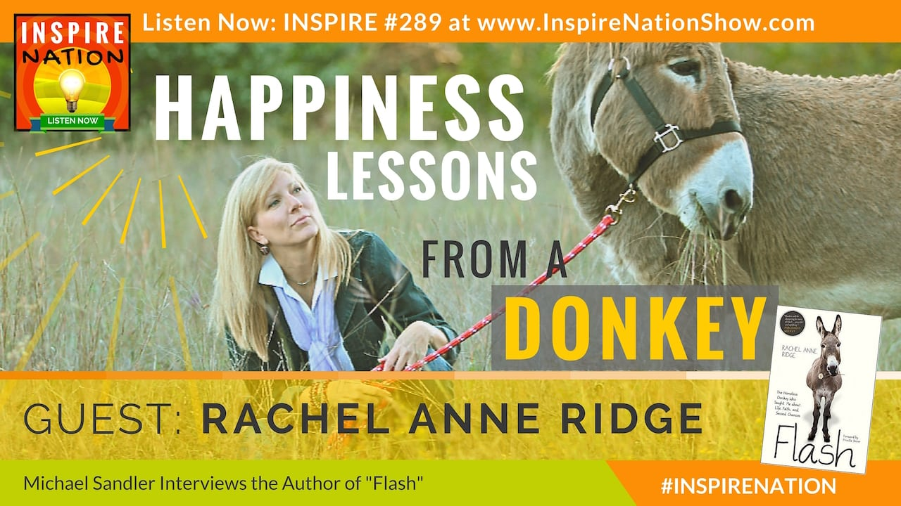 Listen to Michael Sandler's interview with Rachel Anne Ridge on happiness lessons learned from Flash the Donkey