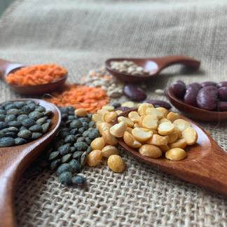 Pulses & Lentils