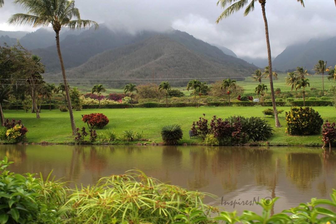 hawaiimaui