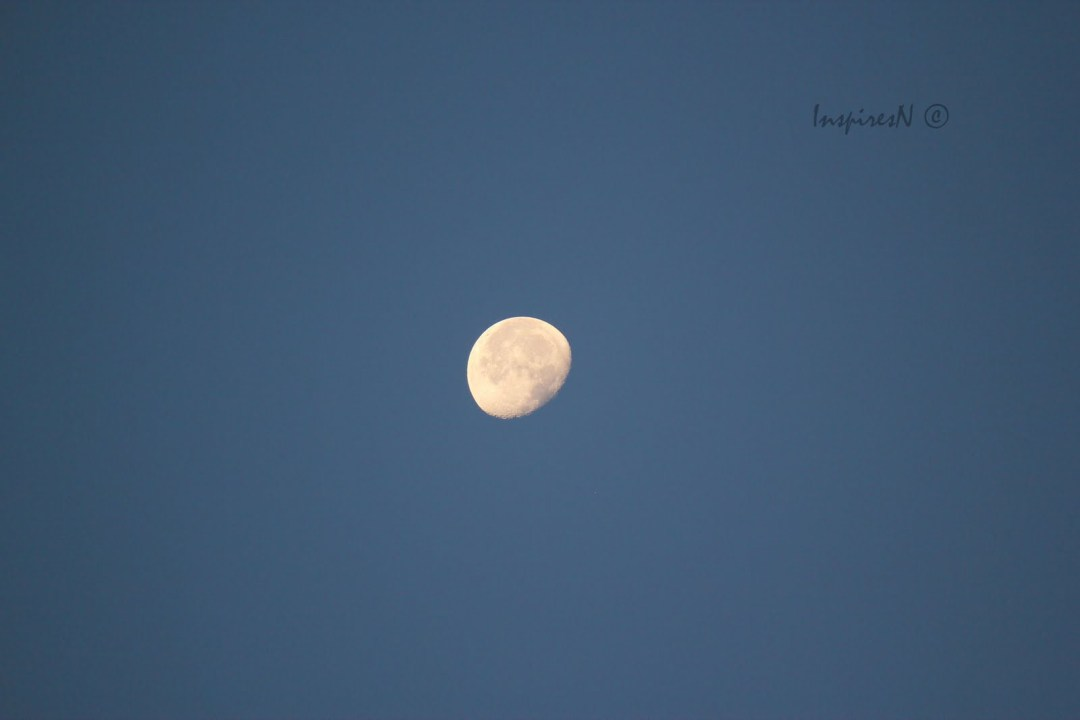 moon_bluesky