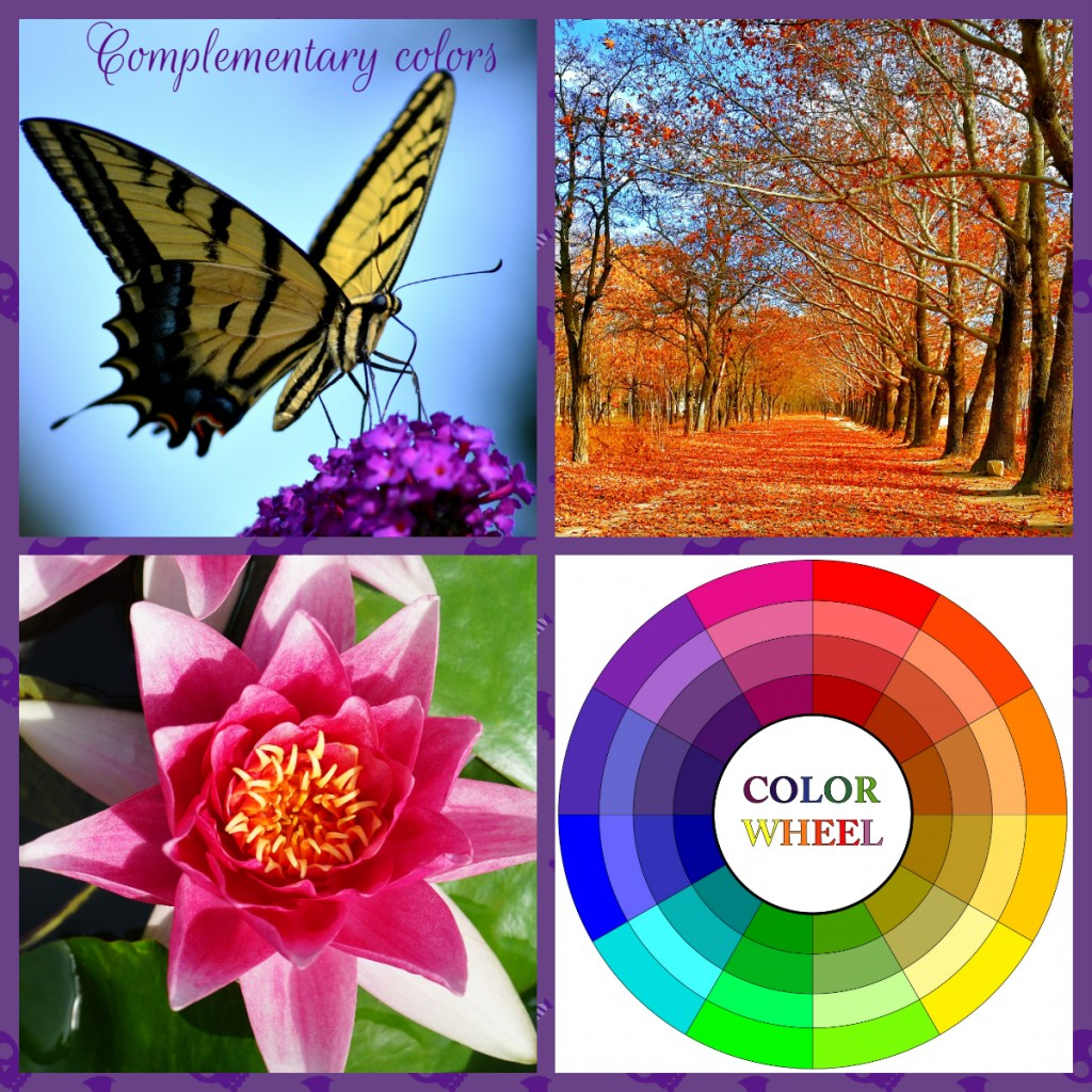 Complementary colors - Composition