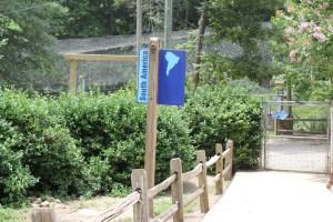 Pathways to walk