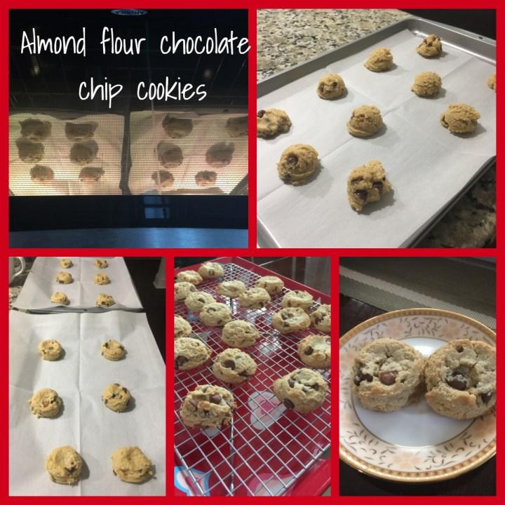 Almond flour coconut oil chocolate chip cookie