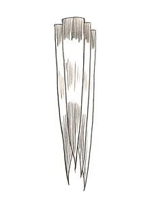Cara Membuat Hiasan Pensil Dari Kulit Jagung : membuat, hiasan, pensil, kulit, jagung, Kerajinan, Kulit, Jagung, Membuatnya, [Lengkap, Video]