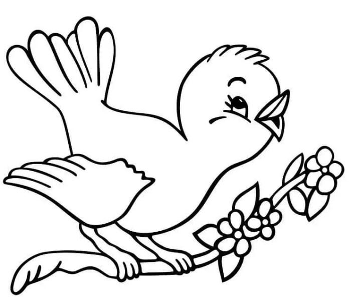 gambar mewarnai hewan burung