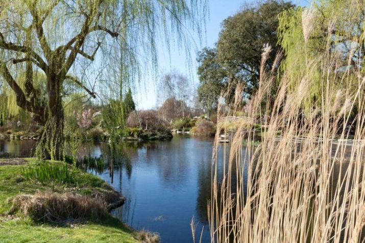 Queen Mary's Garden