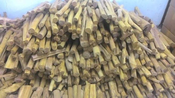 jenis jenis kayu di Indonesia kayu cendana