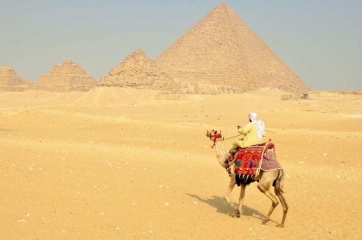 gambar onta dan piramid syarat qurban