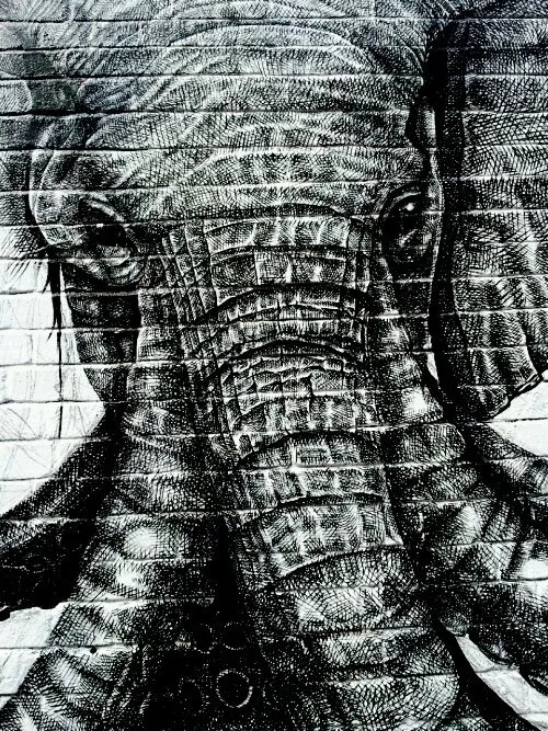 The elephant came to life bit by bit using tiny brushes