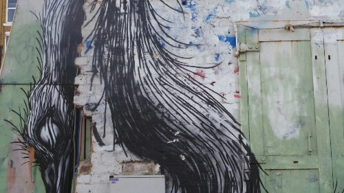 ROA paints big animals and birds in urbanised spaces.