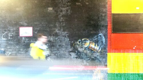 A Louis Masai bee on Coldharbour Lane