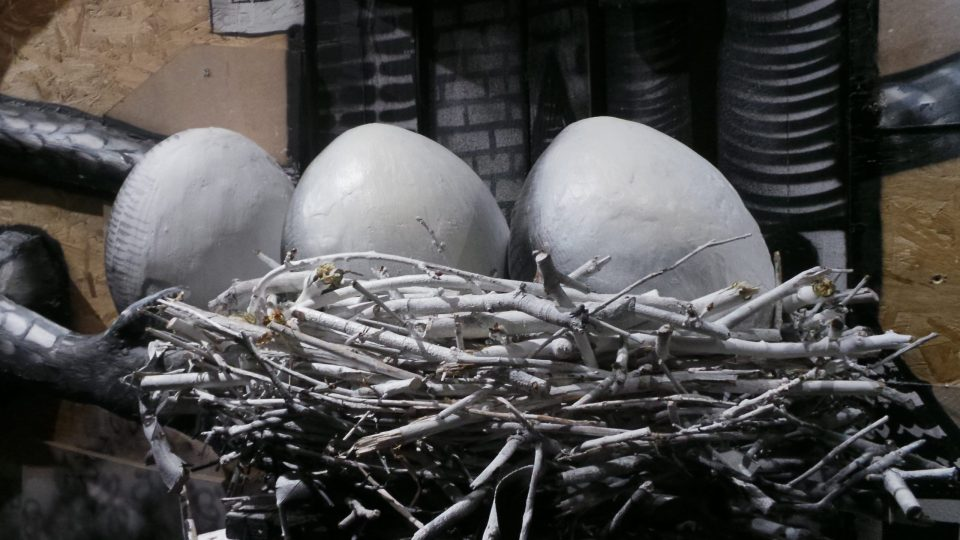 A giant nest with three very big eggs
