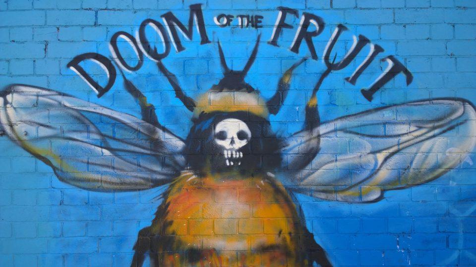 Doom of the Fruit