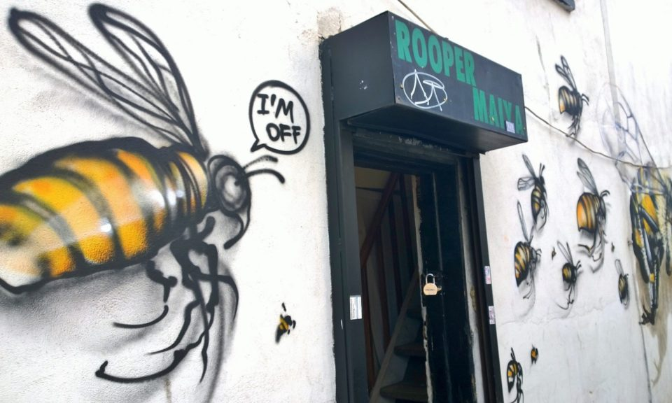 Bees flying along Vallance Road