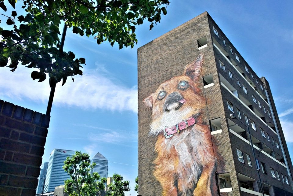 The giant Chihuahua by Chrisp Street market
