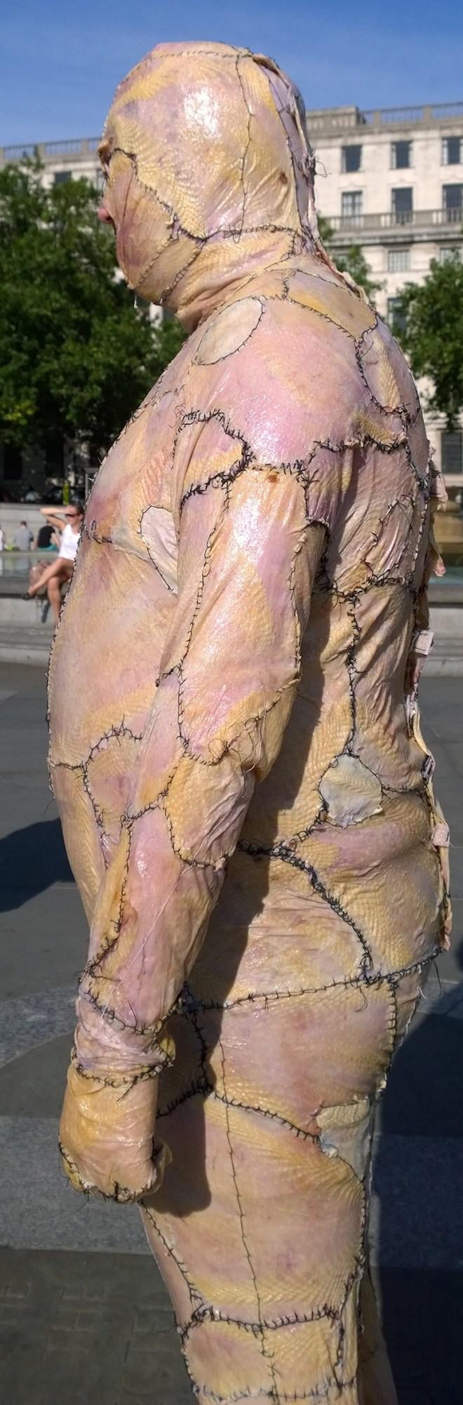 Flesh