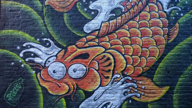 Fish on Water Lane