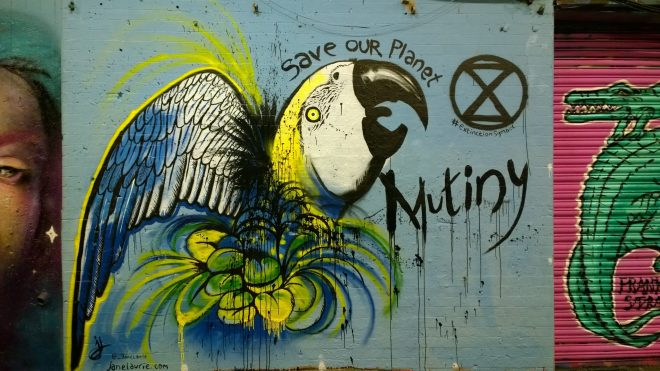 Mutiny chose to use the event as a means of drawing attention to the plight of birds at threat from extinction