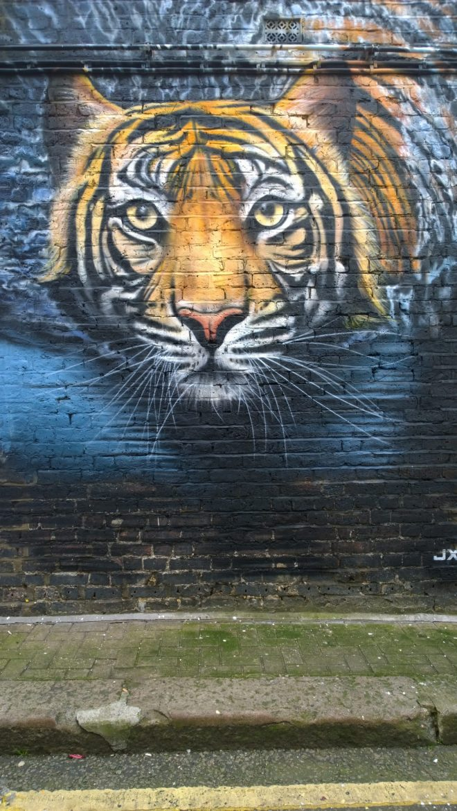 Tiger by JXC