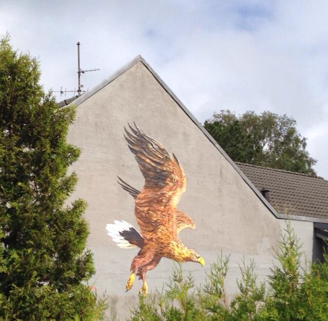 ATM- White Taled Eagle, Stavanger Norway