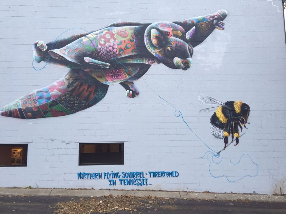 flying-squirrel-louis-masai-emil-walker