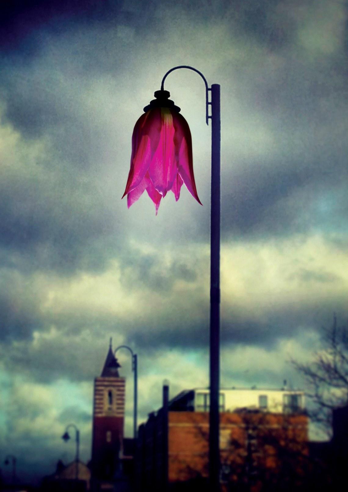 FLOWER STREET LAMP-POSTER