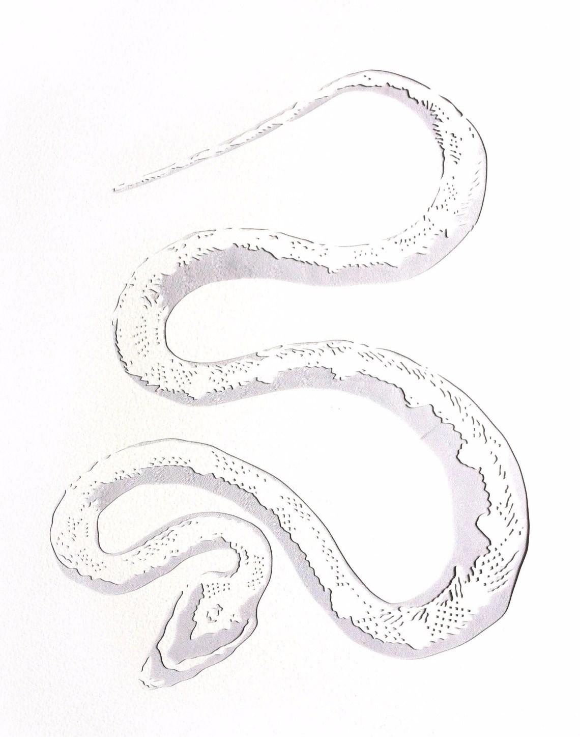 snake-abbey-kayte.jpg