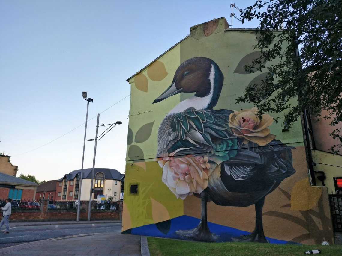 Curtis Hylton Duck Blackburn Open Walls