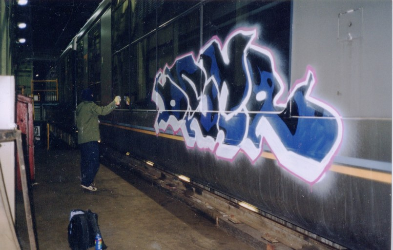 Dscreet painting trains in Melbourne