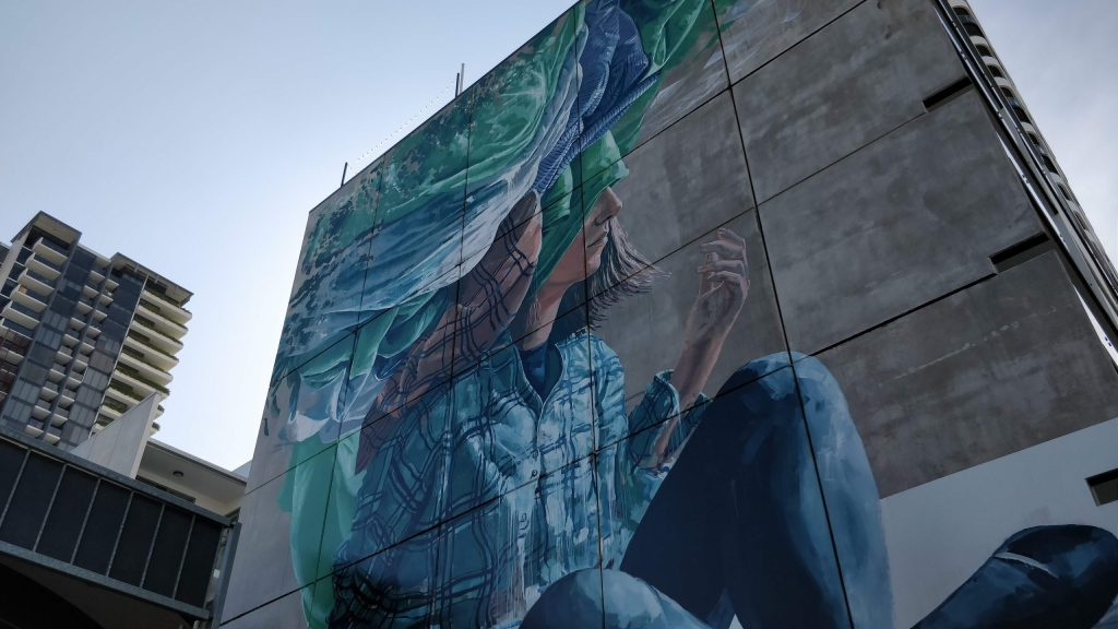 A mural by Fintan Magee on Fish Lane in Brisbane