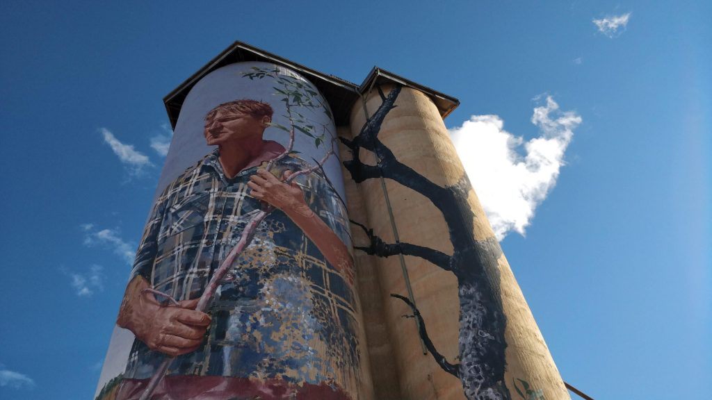 Grain Silo Art in Patchewollock, Australia by street artist Fintan Magee