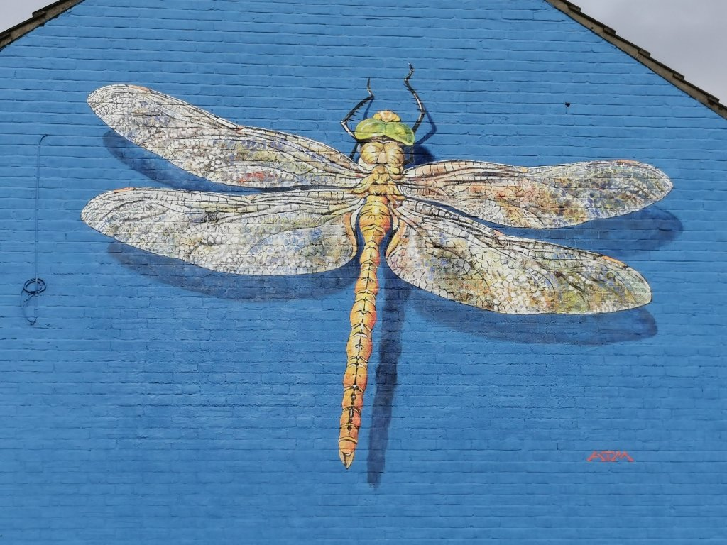 Norfolk Hawker Dragonfly mural in Lowestoft by ATM