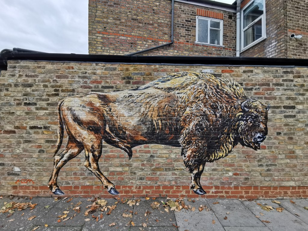 A Bison painted by street artist ATM in Harringay for the London Mural Festival